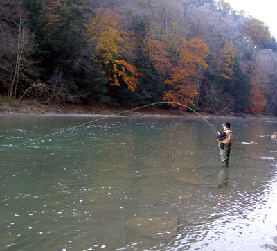 Cattaraugus creek outfitters guided trips rates for Cattaraugus creek fishing report